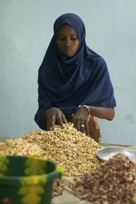 Woman working, Senegal